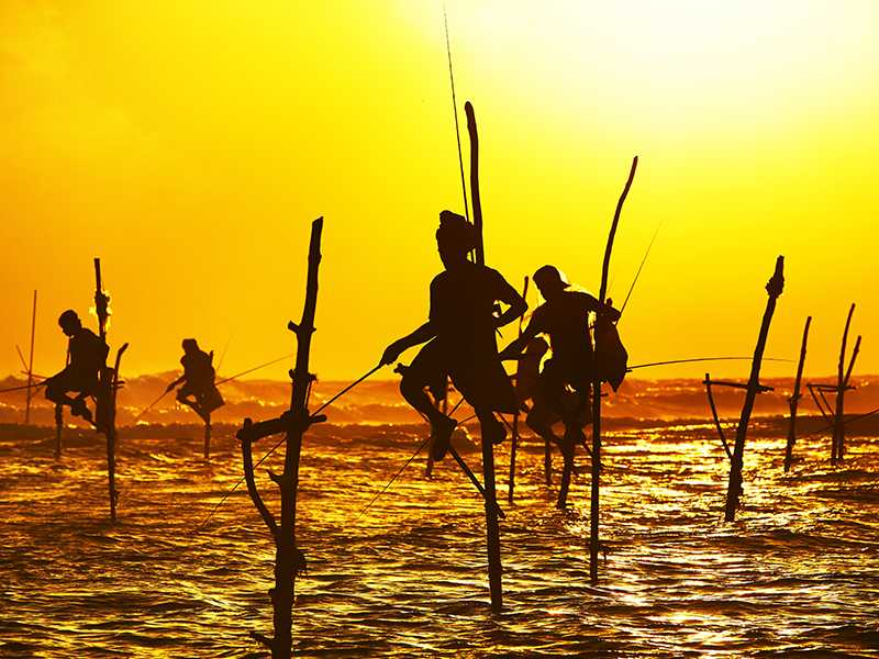 A group of stilt fishermen