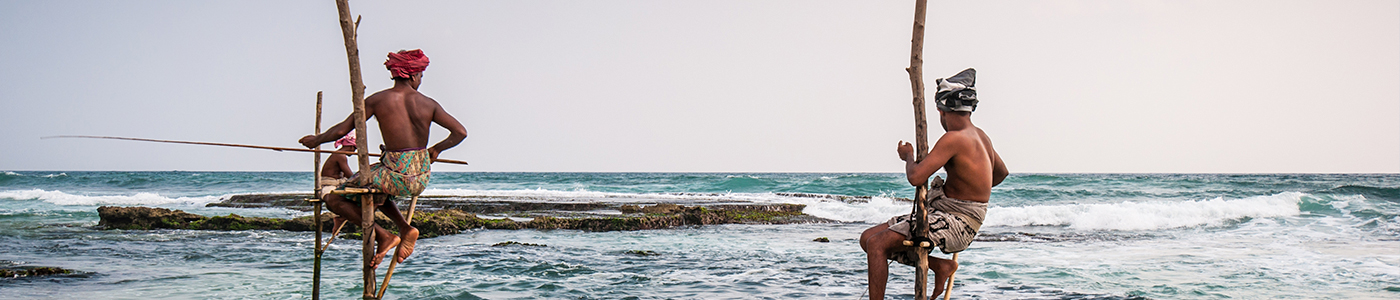 Stilt Fishing in Weligama