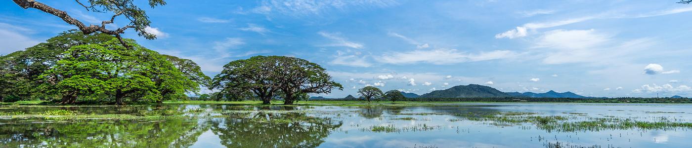 Tissa Lake in Sri Lanka